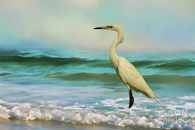 Photograph - Elegant Egret In The Surf by Myrna Bradshaw