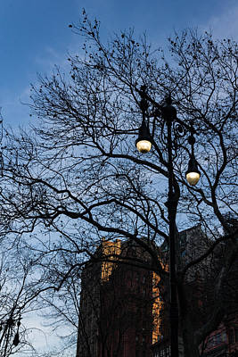 Photograph - Elegant Period Streetlights And Manhattan Skyscrapers Through Naked Tree Branches by Georgia Mizuleva