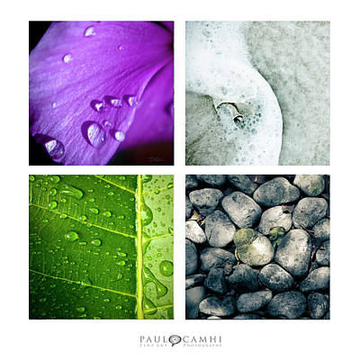 Photograph - Elements by Paul Camhi