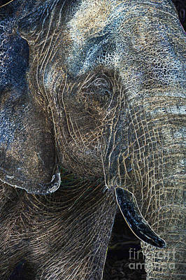 Digital Art - Neon Animals - Elephant 1 by Wendy Wilton