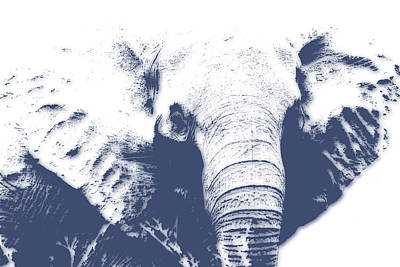 Elephant 4 Art Print by Joe Hamilton