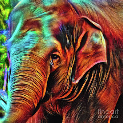 Photograph - Elephant Abstract Psychedelic By Kaye Menner by Kaye Menner