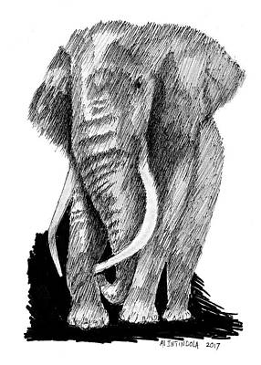 Drawing - Elephant by Al Intindola