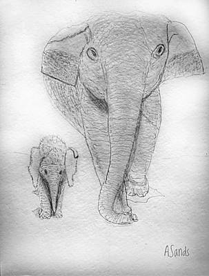 Drawing - Elephant And Baby by Anne Sands