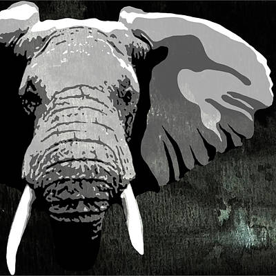 Black Tusk Painting - Elephant Animal Decorative Black And White Wall Poster 2 by Diana Van