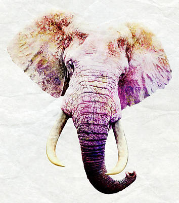Ivory Art Mixed Media - Elephant Art by Stacey Chiew