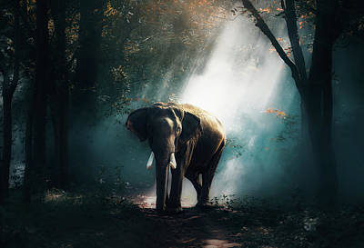 Surreal Landscape Photograph - Elephant At Daybreak by Sasin Tipchai