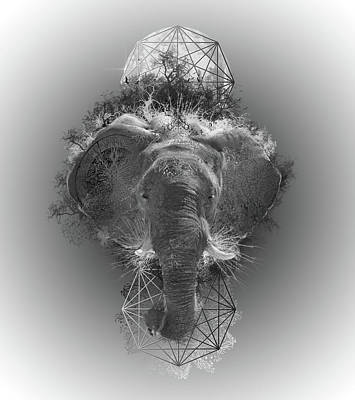 Abstract Nature Digital Art - Elephant by Bekim Art