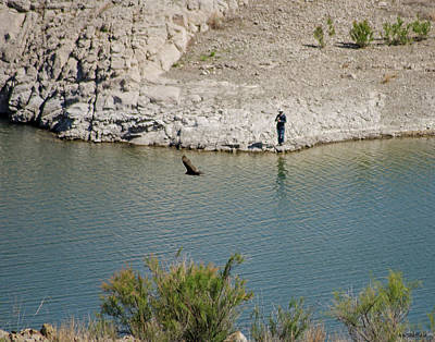 Photograph - Elephant Butte Lake - Fisherman With Buzzard by Allen Sheffield