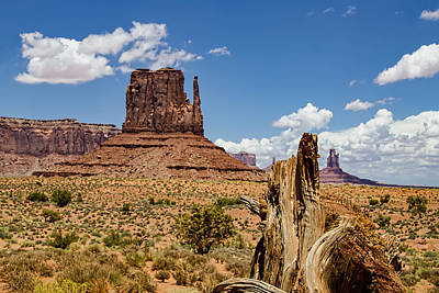 Elephant Butte - Monument Valley - Arizona Art Print by Jon Berghoff