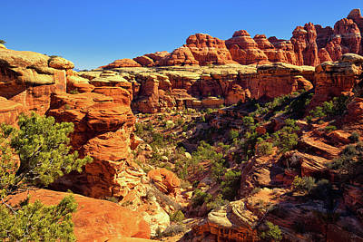 Photograph - Elephant Canyon by Greg Norrell