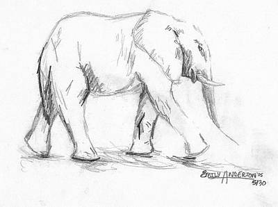 Animals Drawings - Elephant by Emily Boehm