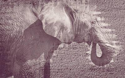 Photograph - Elephant Fine Art by Jacek Wojnarowski