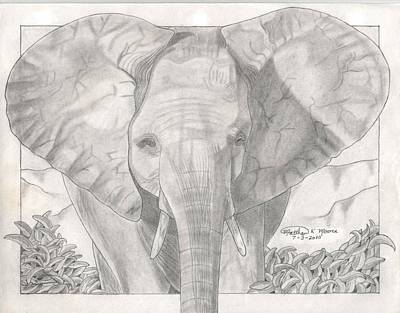 Elephant Pencil Drawing Drawing - Elephant Frolic by Matthew Moore