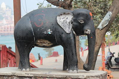 Photograph - Elephant, Haridwar by Jennifer Mazzucco