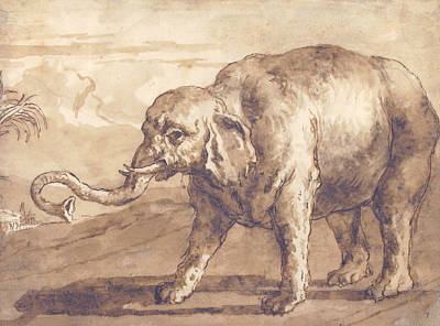 Drawing - Elephant In A Landscape by Giovanni Domenico Tiepolo