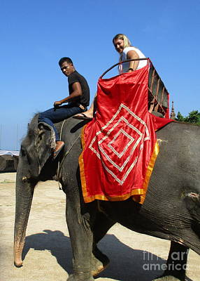 Photograph - Elephant In Thailand by Randall Weidner