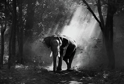 Wildlife Landscape Mixed Media - Elephant In The Heat Of The Sun Black And White by Georgiana Romanovna