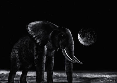 Elephants Digital Art - Elephant In The Night by Ramon Martinez