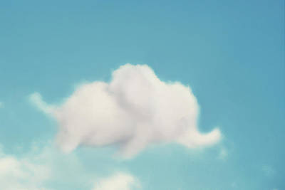 Baby Animal Photograph - Elephant In The Sky by Amy Tyler