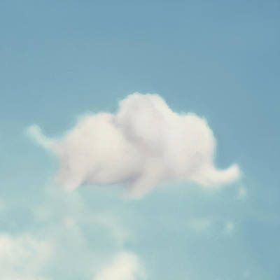 Kids Art Photograph - Elephant In The Sky - Square Format by Amy Tyler