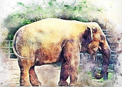 Route 66 - Elephant by Justyna Jaszke JBJart