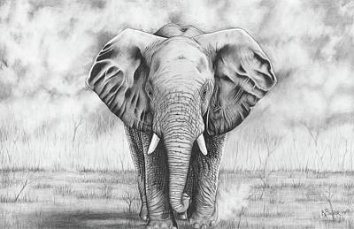 Elephant Drawing - Elephant by Kaitlin Bauer