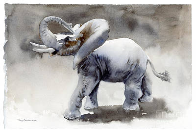 Edge Painting - Elephant Light Study  by Amy Kirkpatrick