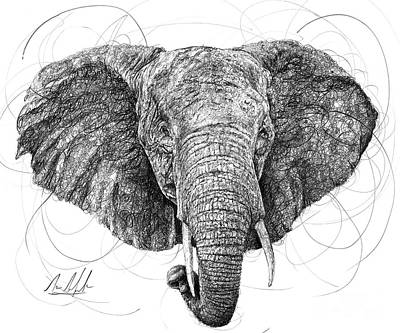 Best Sellers - Animals Drawings - Elephant by Michael Volpicelli