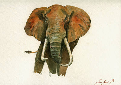 Animal Wall Art - Painting - Elephant Painting           by Juan  Bosco