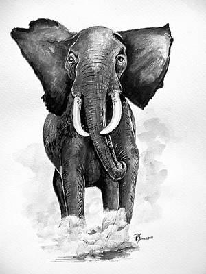Elephant Art Print by Paul Sandilands