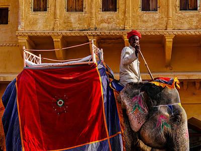 Photograph - Elephant Ride by M G Whittingham