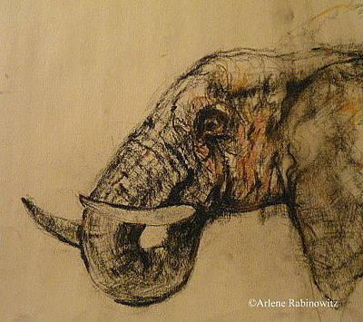 Synesthesia Drawing - Elephant Series 1 by Arlene Rabinowitz