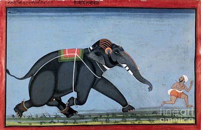 Photograph - Elephant & Trainer, C1750 by Granger