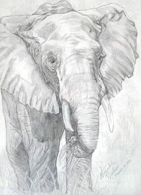 Elephant Walk Art Print by Nancy Rucker