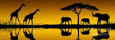 Elephant Photograph - Elephants And Giraffes At Sunrise by David Davis and Photo Researchers