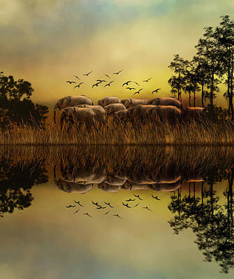 Elephants At Sunset Art Print