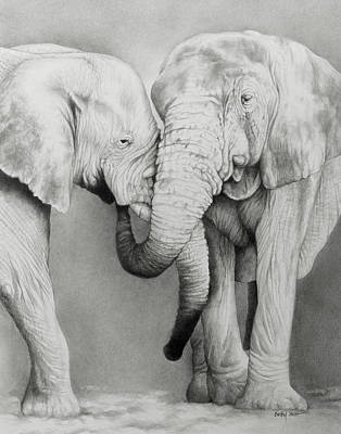 Drawing - Elephant Love by Becky West