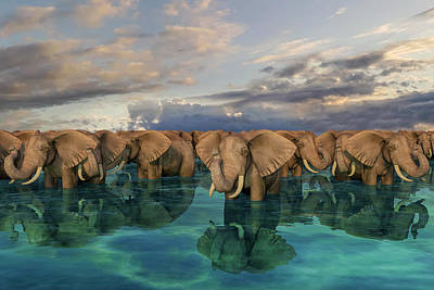 Surrealism Digital Art - Elephants by Betsy Knapp
