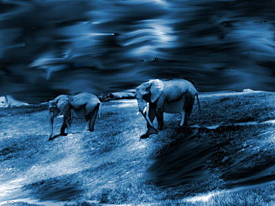 Surreal Photograph - Elephants In Blue Twilight by Abstract Angel Artist Stephen K