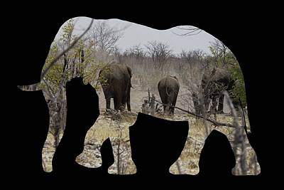 Photograph - Elephants In Namibia by Ernie Echols