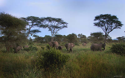 Photograph - Elephants Of The Serengeti by Joseph G Holland