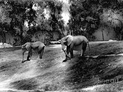 Elephants Photograph - Elephants Strolling by Abstract Angel Artist Stephen K