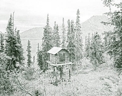 Photograph - Elevated Alaskan Cabin Cache In Evergreens by John Stephens