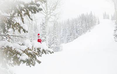 Photograph - Elf On The Pine by Sean Allen
