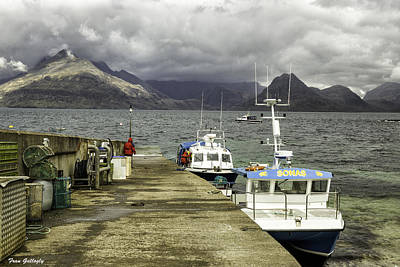 Photograph - Elgol Harbor by Fran Gallogly