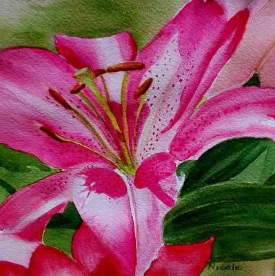Lilies Royalty-Free and Rights-Managed Images - Elises Lily by Nicole Curreri