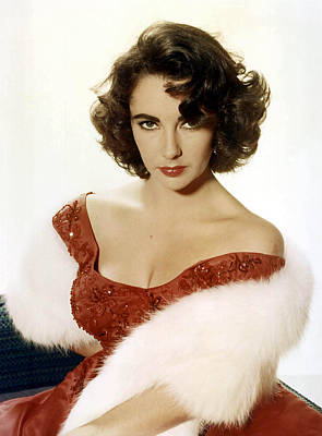 Sex Symbol Photograph - Elizabeth Taylor by American School