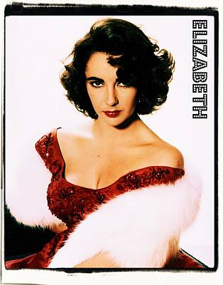 Actors Royalty-Free and Rights-Managed Images - Elizabeth Taylor by John Springfield