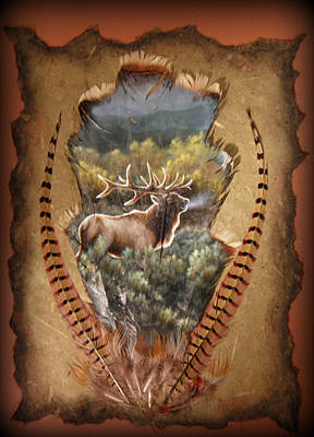 Painting - Elk And Aspen by Sherry Orchard